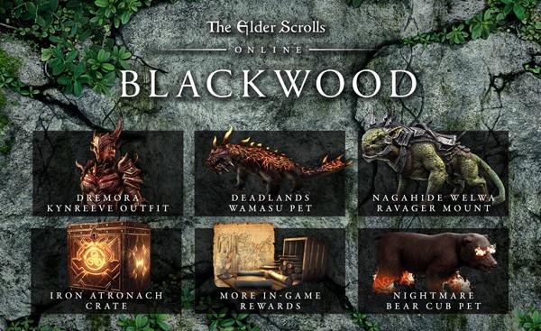 ESO Blackwood pre-order
